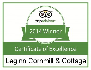 Trip-Advisor---Certificate-of-Excellence-s
